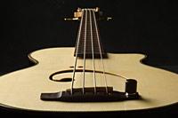 Bass-107