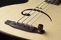 Bass-122