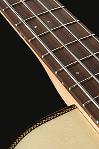 Bass-180-1